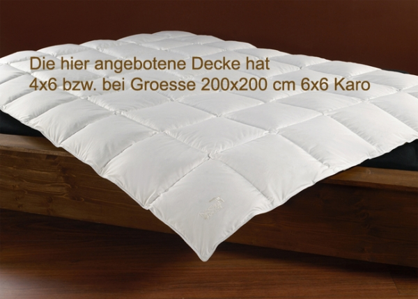 OBB Northern Goose Kassettendecke extra warm